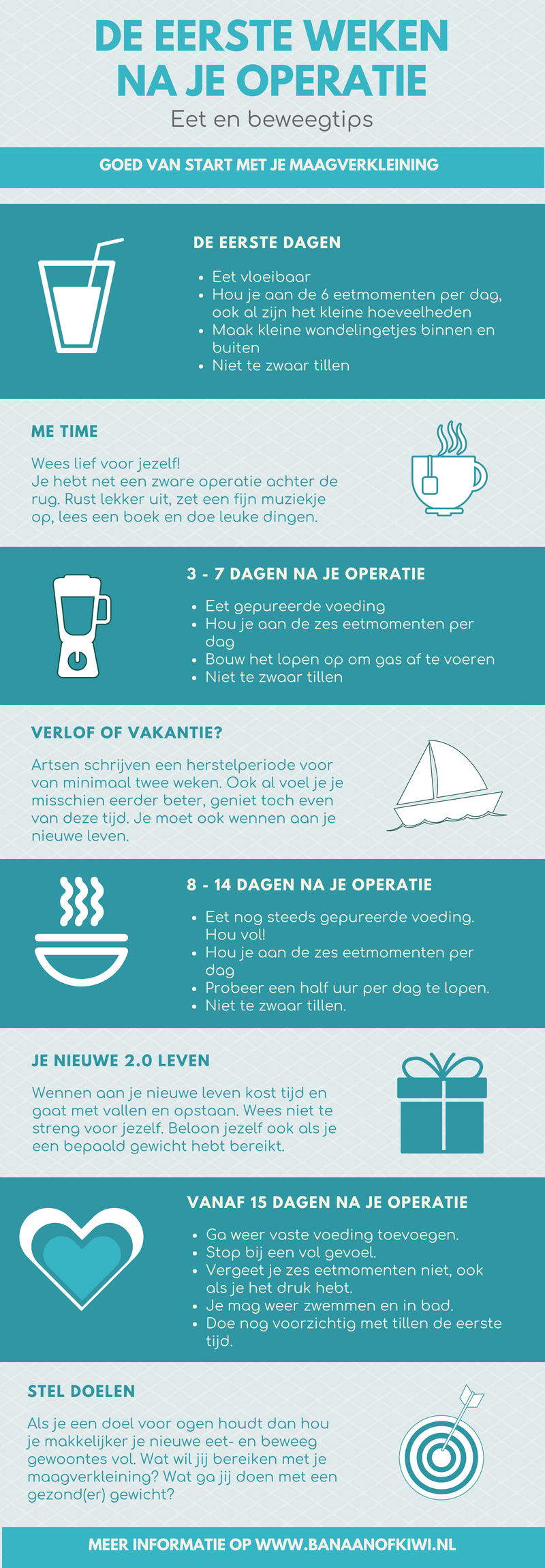 Maagverkleining infographic